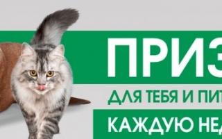 Зарегистрировать чек и код promo.perfectfit.ru