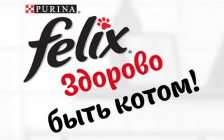 Акция от Феликс 2021 — регистрация чека на felix-club.ru/promo