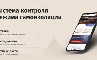 Как оформить заявку на перемещение и передвижение в Нижнем Новгороде