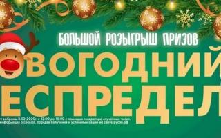 Акция «Новогодний беспредел» — регистрация чека на русап.рф
