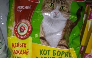 Как зарегистрировать чек Kitekat и выиграть квартиру от кота Бориса