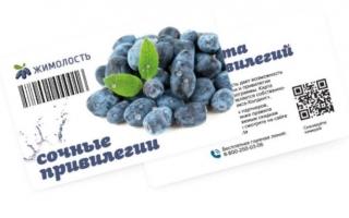 Как активировать и зарегистрировать карту Жимолость супермаркета ШАМСА