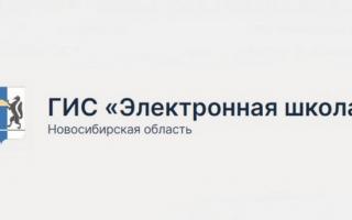Регистрация и вход в Электронную школу НСО по пригласительному коду и через Госуслуги