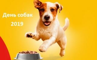 Регистрация чека корма для собак Pedigree 2019