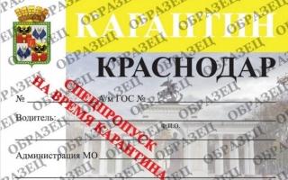 Как получить пропуск на автомобиль в Краснодаре во время карантина