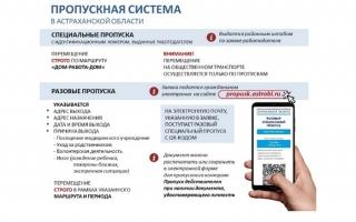 Как подать заявку на специальный пропуск в Астрахани