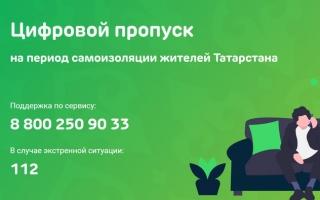 Как получить пропуск на выход из дома в Казани Татарстан
