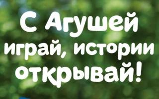 Регистрация кодов акции «С Агушей играй, истории открывай!»