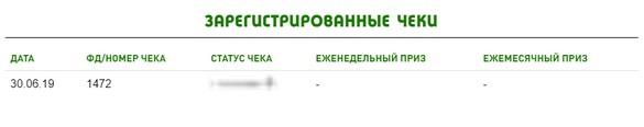 зарегистрированные чеки